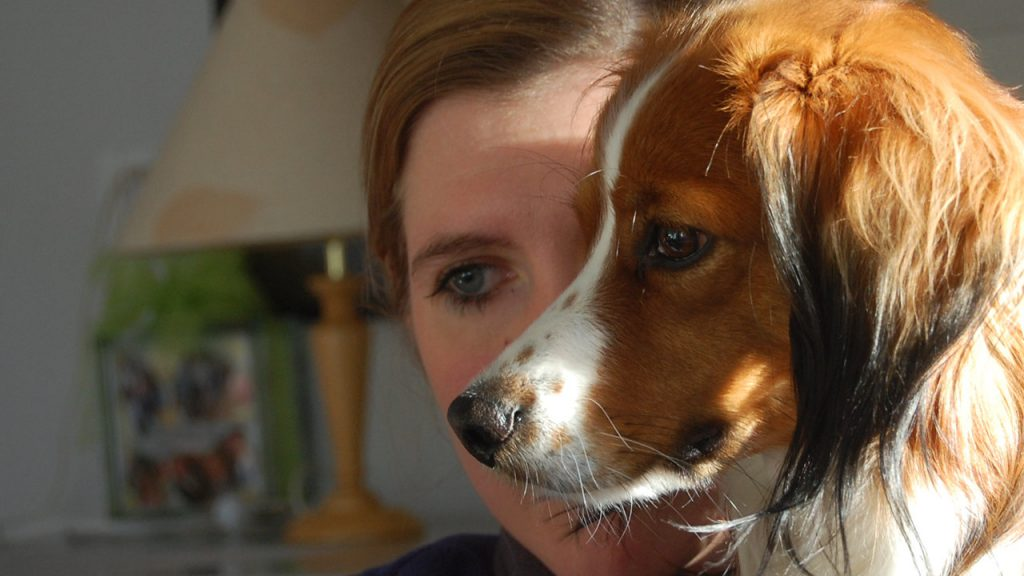Ausbildung zum Therapiehund-Team