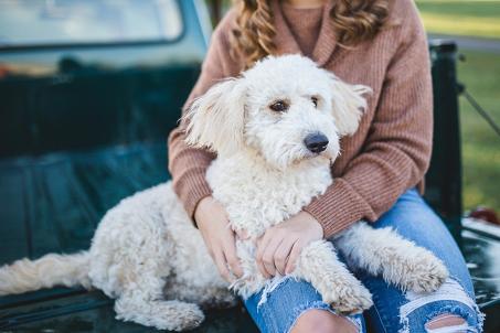 Workshop Beziehund und Vertrauen